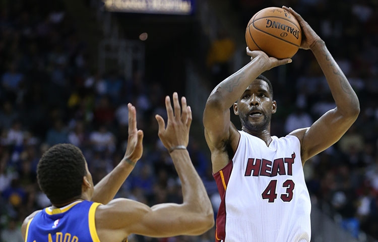 Shawne Williams Miami Heat