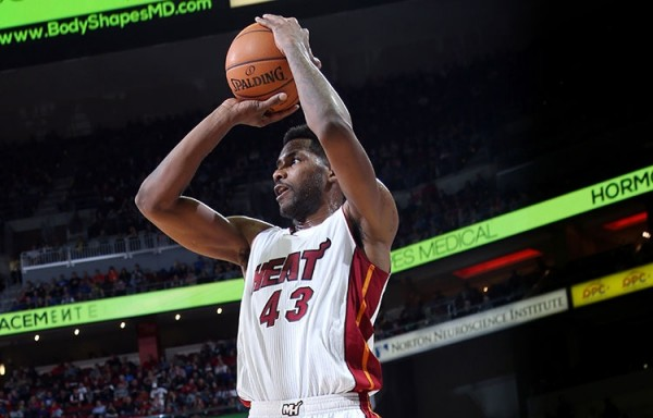 Shawne Williams of the Miami Heat